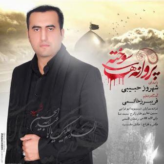 Shahrooz Habibi دانلود آلبوم جدید شهروز حبیبی به نام پروانه های سوخته