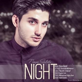 دانلود آهنگ جدید پویا سالکی با نام شب با بالاترین کیفیت