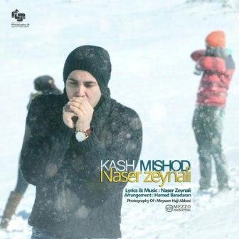 آهنگ جدید ناصر زینعلی بنام کاش میشد