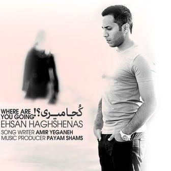 Ehsan Haghshenas Koja Miri دانلود آهنگ جدید احسان حق شناس بنام کجا میری