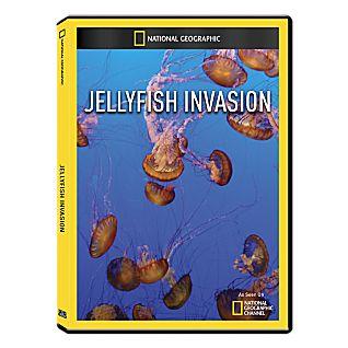 دانلود مستند دوبله فارسی هجوم عروس های دریایی JellyFish Invasion