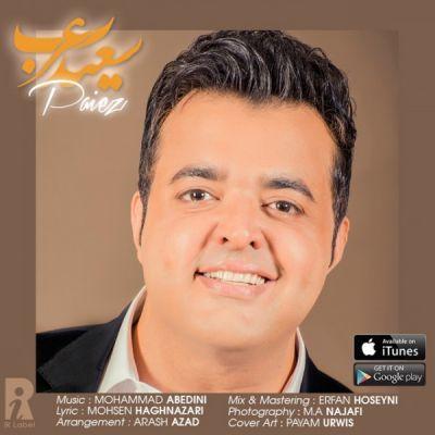 دانلود آهنگ جدید سعید عرب بنام پاییز
