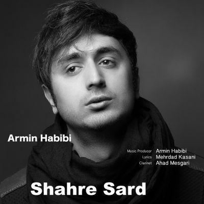 دانلود آهنگ جدید آرمین حبیبی بنام شهر سرد