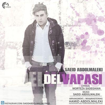 دانلود آهنگ جدید سعید عبدالملکی بنام دلواپسی