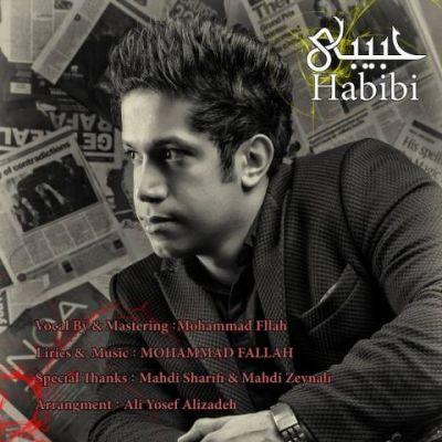 دانلود آهنگ جدید محمد فلاح بنام حبیبی