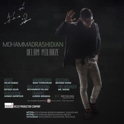 دانلود آهنگ جدید محمد رشیدیان بنام دلم میلرزه
