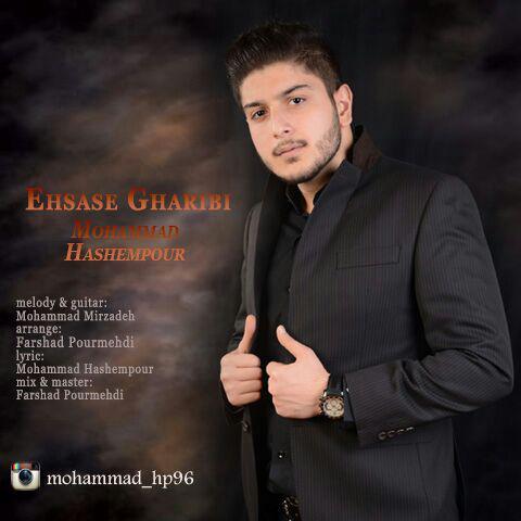 دانلود آهنگ جدید محمد هاشم پور بنام احساس غریبی