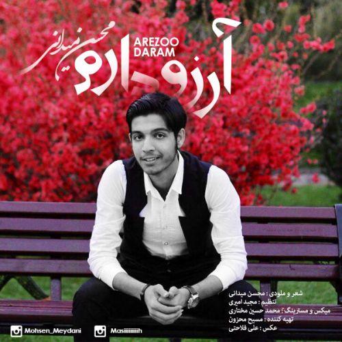 دانلود آهنگ جدید محسن میدانی بنام آرزو دارم