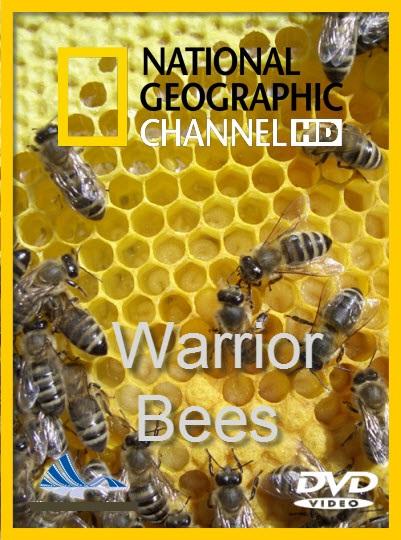 دانلود مستند دوبله فارسی زنبورهای جنگجو Warrior Bees