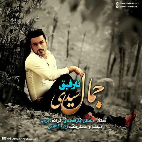دانلود آهنگ جدید جمال سیدی بنام نارفیق