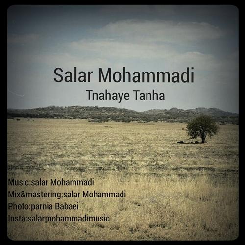 دانلود آهنگ جدید بی کلام سالار محمدی بنام تنهای تنها