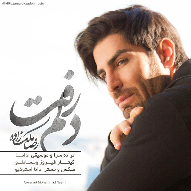 دانلود آهنگ دلم رفت از رضا ملک زاده