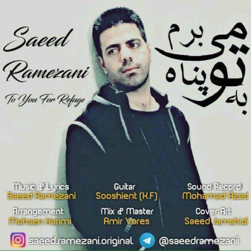 دانلود آهنگ جدید سعید رمضانی بنام به تو پناه میبرم