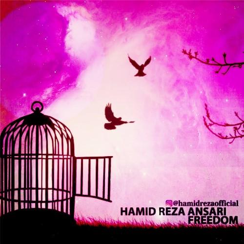 دانلود آهنگ جدید بی کلام حمیدرضا انصاری بنام Freedom
