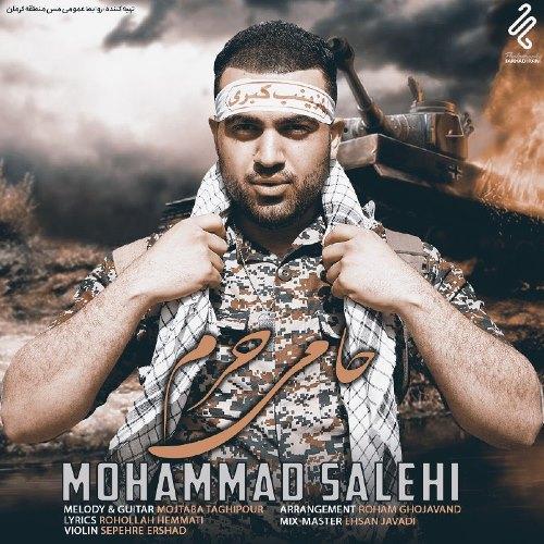 دانلود آهنگ جدید محمد صالحی بنام حامی حرم