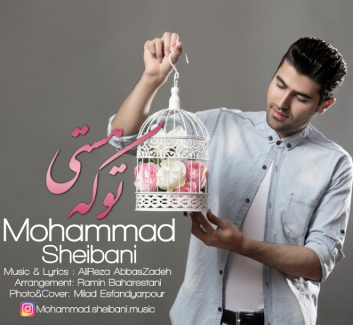 دانلود آهنگ جدید محمد شیبانی بنام تو که هستی