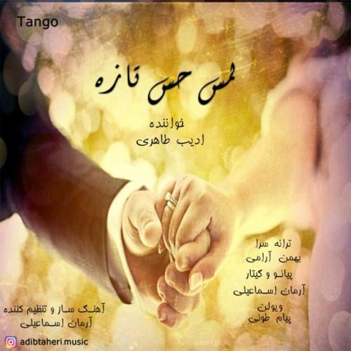 دانلود آهنگ جدید ادیب طاهری بنام لمس حس تازه