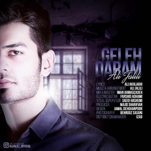 دانلود آهنگ جدید علی جلیلی بنام گله دارم