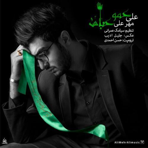 دانلود آهنگ جدید علی مهر علی بنام عمو عباس