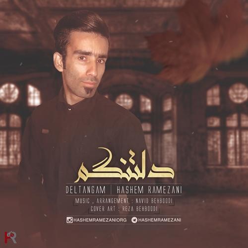دانلود آهنگ جدید هاشم رمضانی بنام دلتنگم