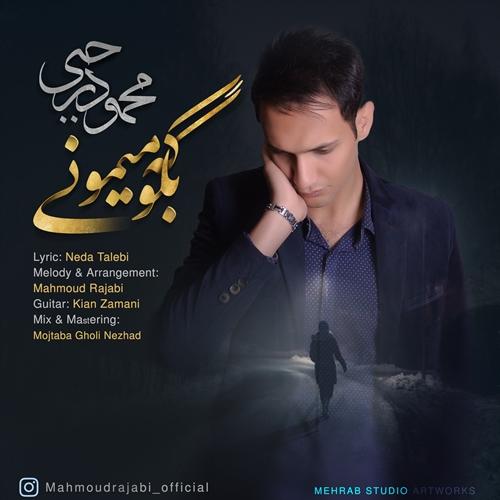 دانلود آهنگ جدید محمود رجبی بنام بگو که میمونی