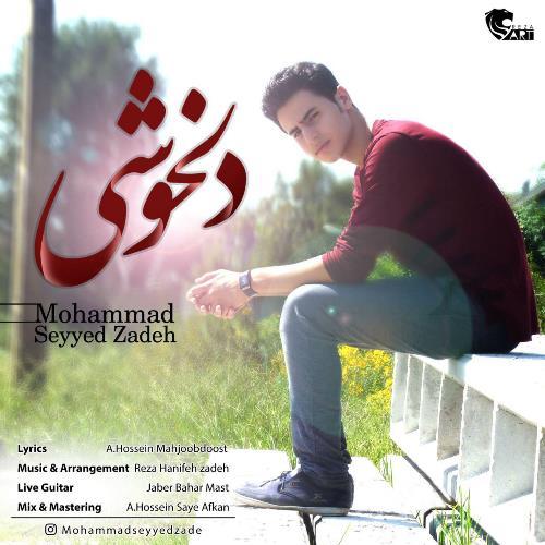 دانلود آهنگ جدید محمد سید زاده بنام دلخوشی
