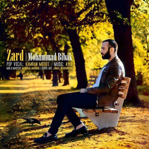 دانلود آهنگ جدید محمد بیباک بنام زرد