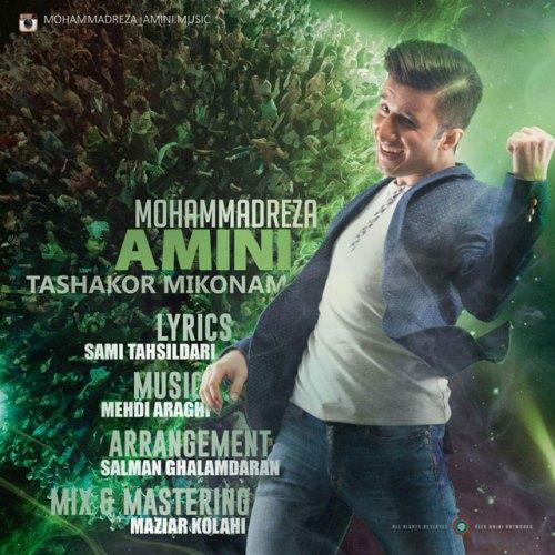 دانلود آهنگ جدید محمدرضا امینی نام تشکر میکنم