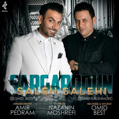 دانلود آهنگ جدید صالح صالحی بنام سرگردون