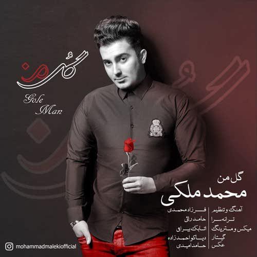 دانلود آهنگ جدید محمد ملکی بنام گل من