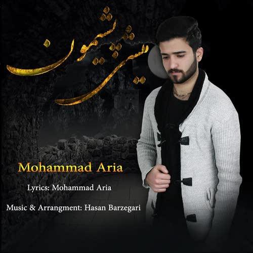 دانلود آهنگ جدید محمد آریا بنام پشیمون میشی