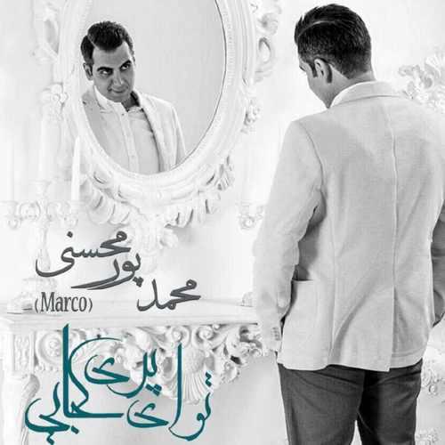 دانلود آهنگ جدید محمد پورمحسنی بنام تو ای پری کجایی