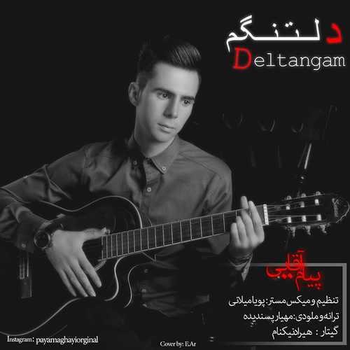 دانلود آهنگ جدید پیام آقایی بنام دلتنگم