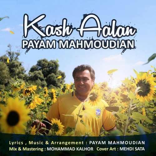 دانلود آهنگ جدید پیام محمودیان بنام کاش الان