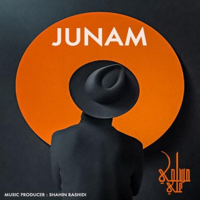دانلود آهنگ جدید علی مسلمی بنام جونم
