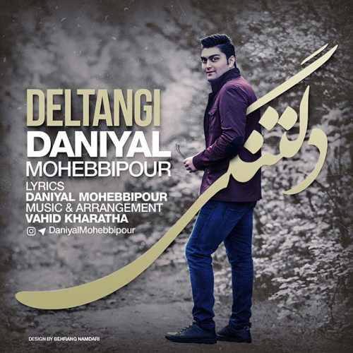 دانلود آهنگ جدید دانیال محبی پور بنام دلتنگی