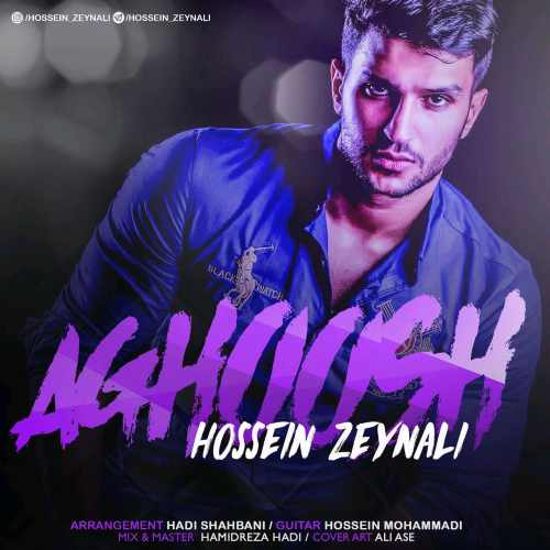 دانلود آهنگ جدید حسین زینالی بنام آغوش