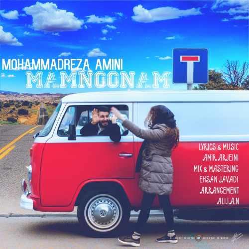 دانلود آهنگ جدید محمدرضا امینی بنام ممنونم