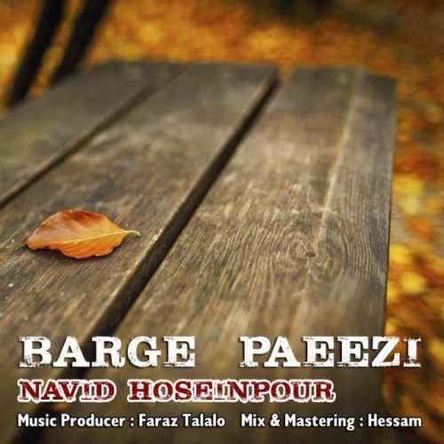 دانلود آهنگ جدید نوید حسین پور بنام برگ پاییزی