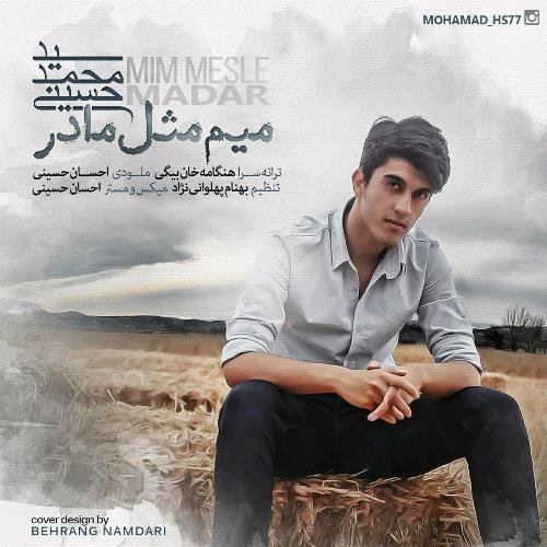 دانلود آهنگ جدید سید محمد حسینی بنام میم مثل مادر