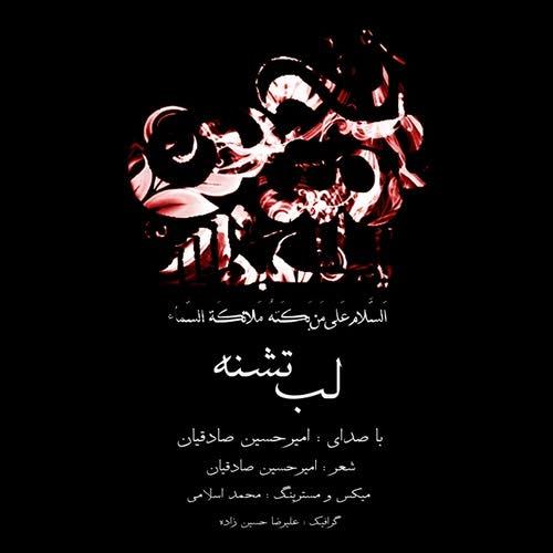 دانلود آهنگ جدید امیر حسین صادقیان بنام لب تشنه