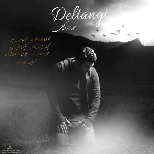 دانلود آهنگ جدید محمد زند وکیلی بنام دلتنگی