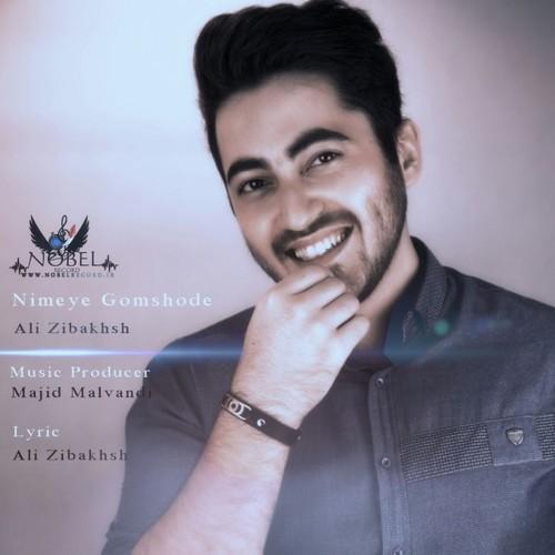 دانلود آهنگ جدید علی زیبخش بنام نیمه ی گمشده