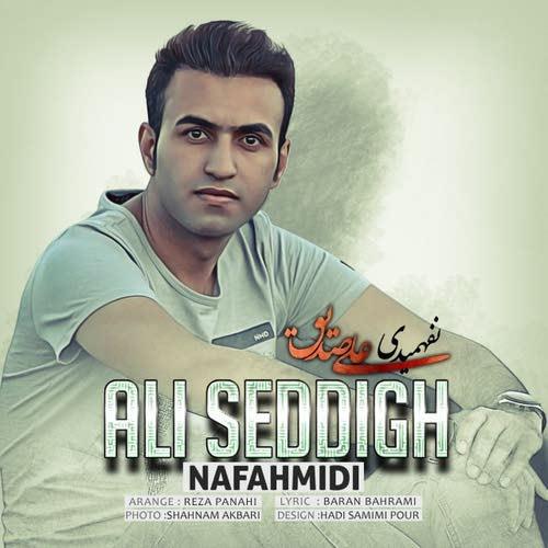 دانلود آهنگ جدید علی صدیق بنام نفهمیدی