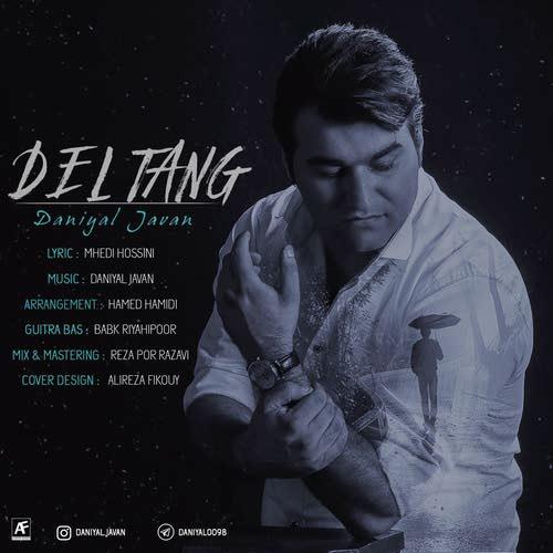 دانلود آهنگ جدید دانیال جوان بنام دلتنگ