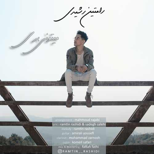 Ramtin Rashidi - دانلود آهنگ جدید رامتین رشیدی بنام میتونی بری