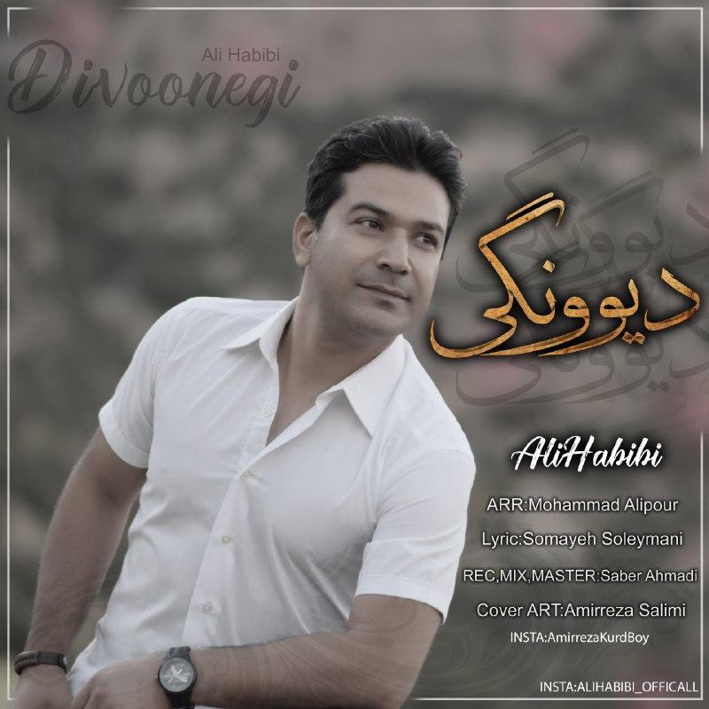 دانلود آهنگ جدید علی حبیبی بنام دیوونگی