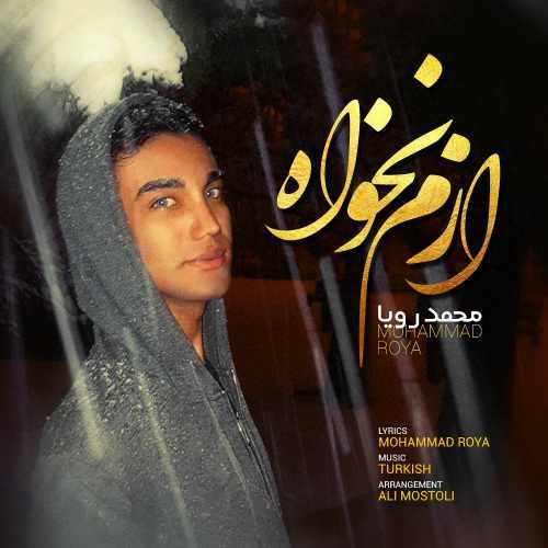 دانلود آهنگ جدید محمد رویا بنام ازم نخواه