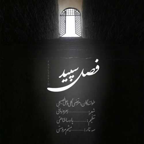 دانلود آهنگ جدید مرتضی گلی و علی فصیحی بنام فصل سپید