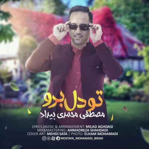 دانلود آهنگ جدید مصطفی محمدی بیداد بنام تو دل برو